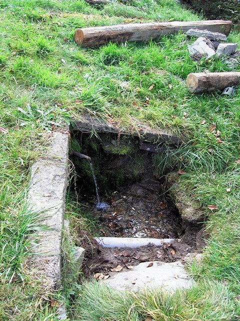 pramen Nezamrzající rybníček (804)