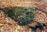 Foto záznam č. 1048 - Studánka Nad Doubskou
