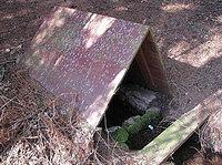 Foto záznam č. 1074 - Brontosauří studánka