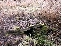 Foto záznam č. 1087 - Žabí studánka