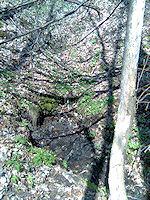 Foto záznam č. 1152 - Pramen u Ježkova vrchu
