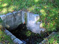 Foto záznam č. 1165 - Lipová studánka