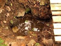 Foto záznam č. 1195 - Permoníkova studánka