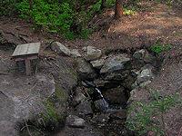 Foto záznam č. 1196 - Kadolecká studánka