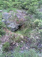 Foto záznam č. 1232 - Pod kamenem