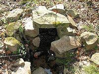 Foto záznam č. 1284 - Pod skořickou loukou