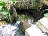 Foto záznam č. 1339 - Pod Borkem