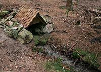 Foto záznam č. 1353 - Pod Brdem