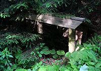Foto záznam č. 1426 - V Srní dolině