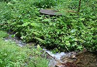 Foto záznam č. 1470 - Studna v Čeladném
