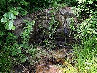 Foto záznam č. 1496 - Myšházka