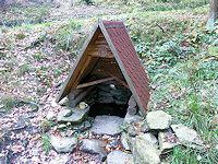 Foto záznam č. 309 - Kočičí