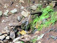 Foto záznam č. 544 - V Jindřišském údolí