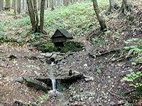 Foto záznam č. 651 - Pramen Jičínky