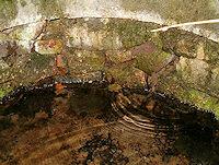 Foto záznam č. 726 - Skelná Huť
