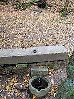 Foto záznam č. 764 - Nad Lamackým rybníkem