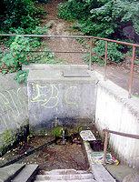 Foto záznam č. 973 - Blaženka