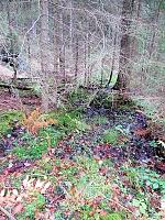 Foto záznam č. 13602 - Hladová voda 2