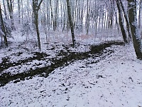 Foto záznam č. 13680 - Nad Jakubovým jezerem