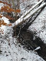 Foto záznam č. 13681 - Pod Bukem