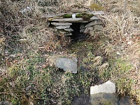 Foto záznam č. 13712 - V Horním lese