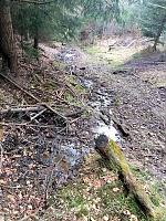 Foto záznam č. 13863 - Horní lesní trať 2