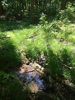 Foto záznam č. 13941 - Pod Stříbrnou cestou 2
