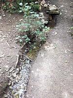 Foto záznam č. 13959 - Višňovka