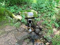 Foto záznam č. 14015 - pramen Hlučného potoka