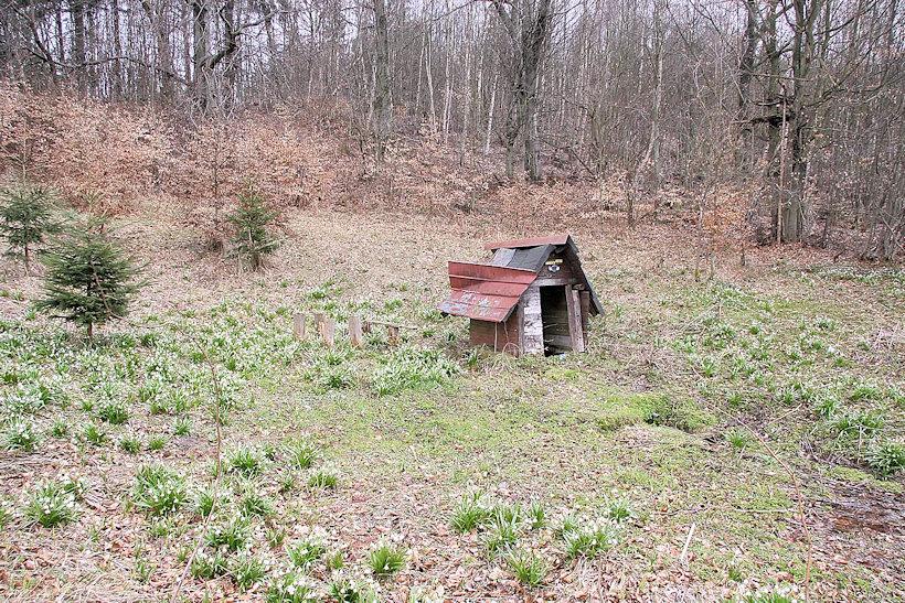 studánka Pod Pasekou (2937)