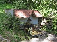 Foto záznam č. 1768 - Lesní