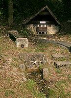 Foto záznam č. 1806 - Sirka