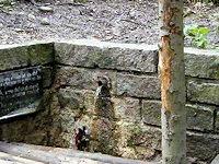 Foto záznam č. 1872 - Duchnová studánka
