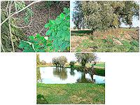 Foto záznam č. 2044 - Prameny Radotínského potoka