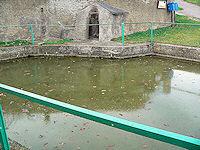 Foto záznam č. 2046 - Studánka v Chaloupkách