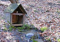 Foto záznam č. 2073 - Kamenné potoky (Smutný žleb)