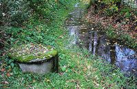 Foto záznam č. 2164 - Studna v náhonu