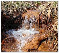 Foto záznam č. 2202 - Rezavý potok