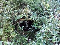 Foto záznam č. 2467 - Pod Rotmberkem