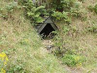Foto záznam č. 2576 - Šumný důl