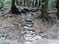 Foto záznam č. 2578 - U lesní školky