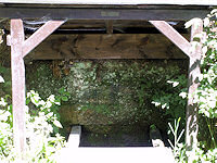 Foto záznam č. 2583 - Planodolská studánka