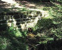 Foto záznam č. 2623 - Křenkův pramen