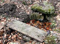 Foto záznam č. 2766 - Dřevěná studánka