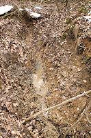 Foto záznam č. 2828 - Pod dubem