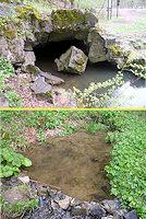 Foto záznam č. 3156 - vývěry Jedovnického potoka