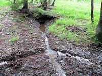 Foto záznam č. 3481 - Barevná voda