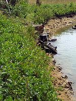 Foto záznam č. 3894 - Nad rybníčky