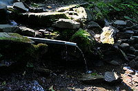 Foto záznam č. 3926 - V Potokách