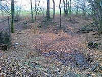 Foto záznam č. 4241 - prameniště Kopaniny